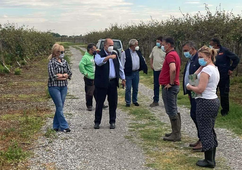 Επίσκεψη Αντιπεριφερειάρχη Πιερίας στις πληγείσες από το χαλάζι καλλιέργειες της περιοχής του Δήμου Δίου-Ολύμπου