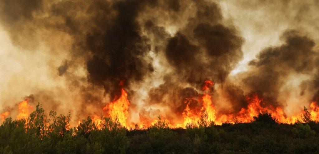Περισσότερα από 650.000 στρέμματα οι καμένες εκτάσεις σε Εύβοια, Αττική και Λακωνία